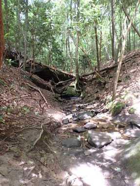 Eagle's Fall, Cumberland Falls Park